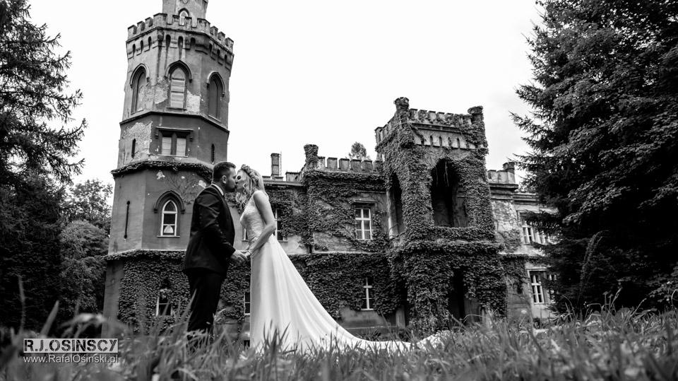 zamek bulowice