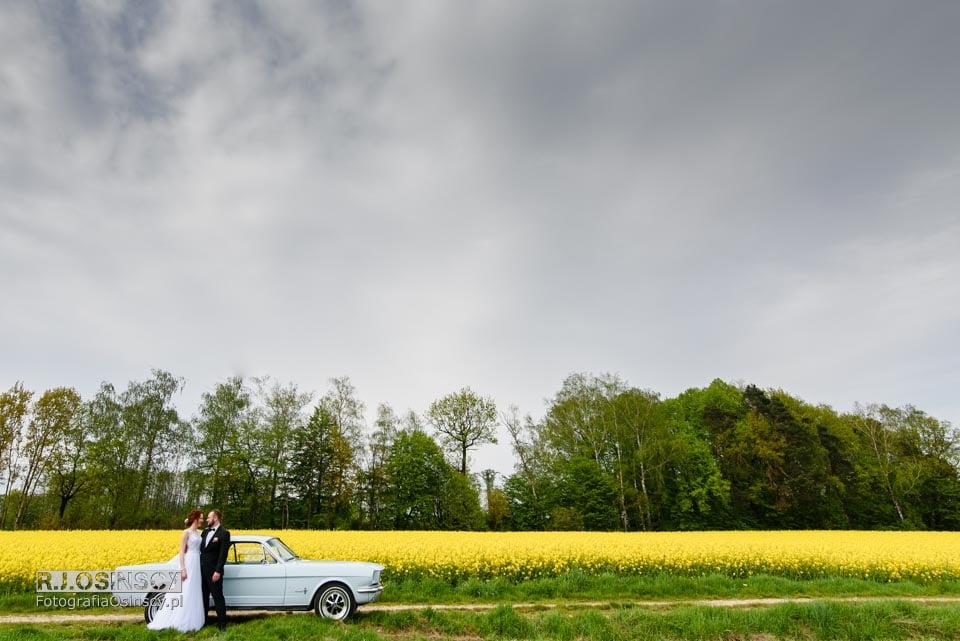 fotograf ślubny knurów